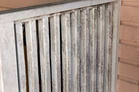 How Do You Get Rid Of Mold In A Basement by To Get Rid Of Mold