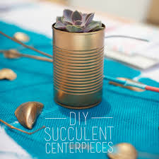 simple affordable diy succulent centerpieces eyeheartprettythings