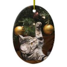 gray cat ornaments keepsake ornaments zazzle