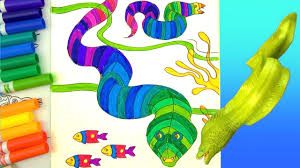 learn to color coloring pages moray eel fun facts coloring