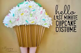 cupcake costume easy diy cupcake costume last minute costume hello
