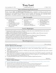 Nanny On A Resume Buy A Dissertation Online Kit Help Desk Cover Letter Resume Order