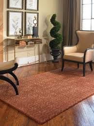 Inexpensive Floor Rugs 38 Best Living Room Area Rugs Images On Pinterest Living Room
