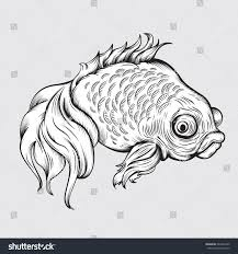 vector drawing goldfish line easy stock vector 681828745