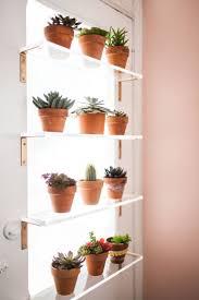 best 25 plant shelves ideas only on pinterest bathroom ladder