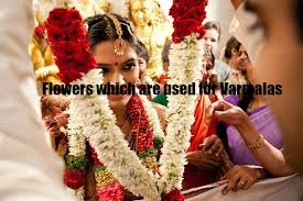 flowers garland hindu wedding significance of flowers in indian weddings