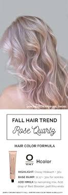 hair color formula how to mix hair color formula best hair color inspiration 2018