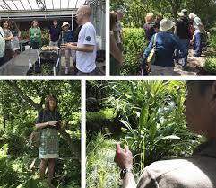 Missouri Botanical Gardens Missouri Botanical Garden A Fascinating Fopd Update Plant