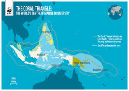 Bermuda Triangle Map Coral Triangle Map Wwf