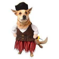 Buffalo Halloween Costume Dog Pet Halloween Costumes Target