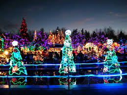 Vandusen Botanical Garden Lights Botanical Gardens Festival Of Lights Wellington 2015 Athlone