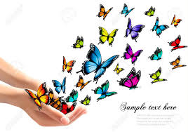 releasing colorful butterflies vector illustration royalty