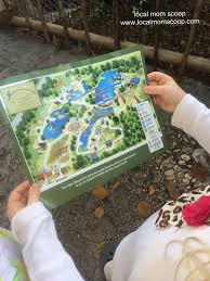 Smithsonian Zoo Map Local Mom Scoop Goes Wild At The Palm Beach Zoo Local Mom Scoop