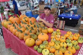 The Colony Tx Pumpkin Patch by North Texas Farmers Markets Are In Gap Mode With Some Crops