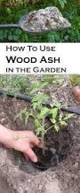 best 25 ash ash ideas on pinterest balayage ombre blonde ash