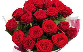 2 dozen roses whole foods deal 2 dozen roses 24 99 southern savers