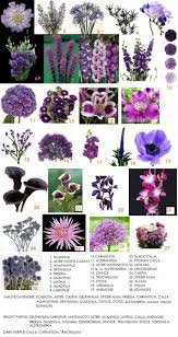 wedding flowers names purple flowers list with names 25 best flower names ideas on