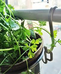 window herb gardens diy window herb garden from ikea pots urban gardens