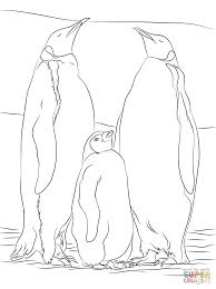 two emperor penguins with a juvenile coloring page free