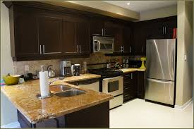 diy cool kitchen cabinets diy kits style home design marvelous