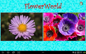 flowerworld kids learn flower android apps on google play