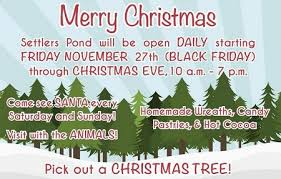 chicagoland illinois christmas tree farms choose and cut