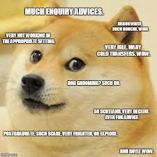 Advice Dog Meme Generator - doge memes imgflip