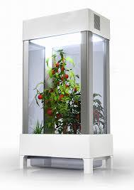 kitchen modern and sophisticated indoor vegetable garden equipment