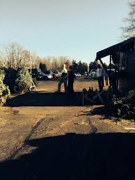 boy scout troop 466 ncac christmas tree sale 2015