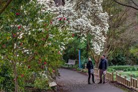 San Francisco Flower Garden by Feb 14 15 Sf Botanical Garden Aphrodisiacs Of The Tropics