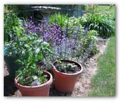 Gardening Layout Easy Vegetable Garden Layouts