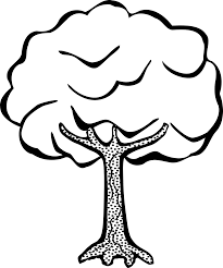 free printable tree coloring pages kids 14 pics draw