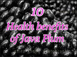 10 health benefits of jaamun use of java plum or naaval pazham