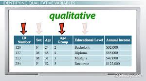 qualitative variable in statistics definition u0026 examples video