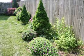 Backyard Ground Cover Ideas by Exterior Design Exciting Backyard Design With Pachysandra Ground