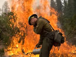 Wild Fire Update Montana by Without Human Made Climate Change U S Forest Fires Would Be Half