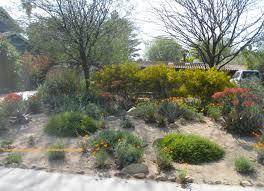 no lawn front garden ideas