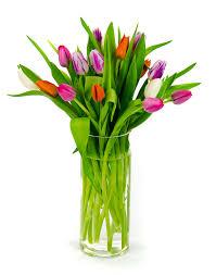 florist richmond va strange s florists greenhouses and garden centers richmond