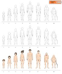Full Body Muscle Anatomy Fullbody Aging Males Pledge12 By Precia T Character
