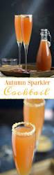 autumn sparkler cocktail recipe autumn beverage and recipes