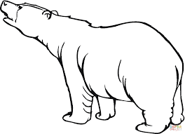polar bear 17 coloring page free printable coloring pages