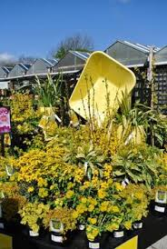 a fun garden display of spring plants at our linglestown garden
