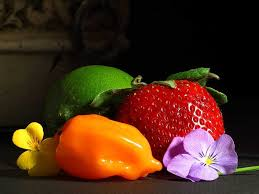 fruit and flowers flowers background codes