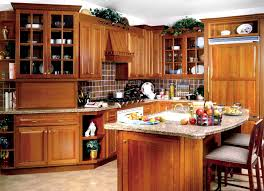 solid wood kitchen cabinets wholesale audacious wood kitchen designs ideas cabinet solid wood kitchen