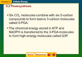 chapter 8 cellular energy ppt download