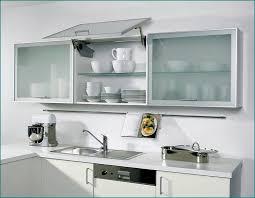 Kitchen Glass Cabinet Doors Home Design Ideas And Pictures - Kitchen glass cabinets