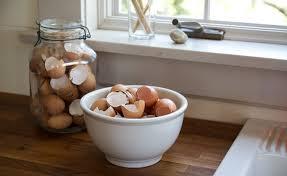 ground egg shells gardening 101 how to use eggshells in the garden gardenista