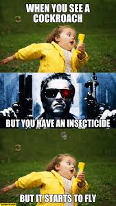 Flying Cockroach Meme - when you see a cockroach but you have an insecticide but it starts