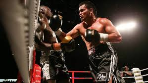 boxer dog in boxing gloves buster bryant to face mad dog filimaea at pahiatua fight night
