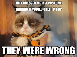 Thinking Cat Meme - they dressed me in a costume they were wrong thinking it would